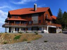 Apartament Dănești, Pensiunea Pethő
