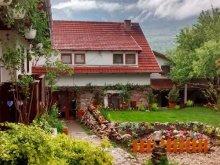 Pensiune Moldovenești, Casa de oaspeți Dr. Demeter Bela