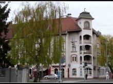 Accommodation Szabolcs-Szatmár-Bereg county, ZOO Friendly Apartment