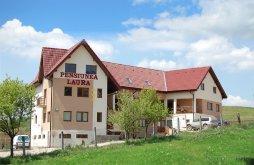 Apartman Magyarpeterd (Petreștii de Jos), Laura Panzió