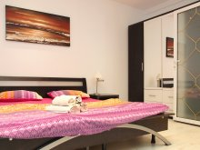 Accommodation Zidurile, Academiei Apartment 2