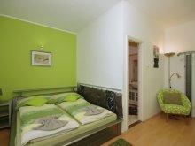 Accommodation Nagybánhegyes, Leila Apartment