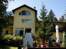 Accommodation Rucăr, Popasul Haiducilor Guesthouse