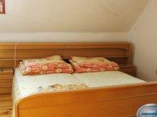 Accommodation Sátoraljaújhely Ski Resort, Huta Guesthouse