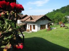 Casă de oaspeți județul Mureş, Casa de oaspeți Hagyó