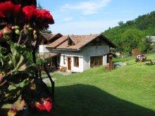 Chalet Budacu de Jos, Hagyó Guesthouse