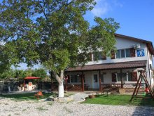 Accommodation Duna-delta, Bunica Maria Villa