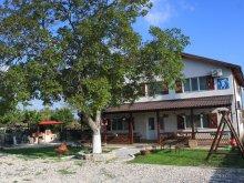 Accommodation Dunavățu de Jos, Bunica Maria Villa