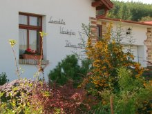 Accommodation Hungary, Levendula Guesthouse