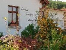 Casă de oaspeți Dunasziget, Casa de oaspeți Levendula