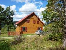 Accommodation Stațiunea Climaterică Sâmbăta, Szilágyi Guesthouse