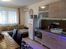 Accommodation Dunaharaszti, Timi és Bálint Wellness Premium Deluxe Apartment