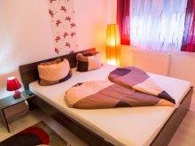 Accommodation Biatorbágy, Timi és Bálint Wellness Superior Apartment 1
