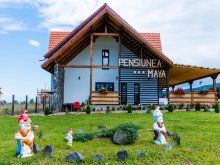 Accommodation Braşov county, Maya Guesthouse
