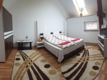 Accommodation Sibiciu de Sus, Sára Guesthouse