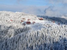 Accommodation Piricske Ski Slope, Pall Guesthouse