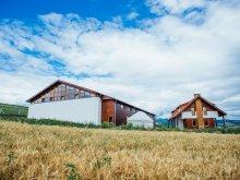 Accommodation Cozmeni, Tichet de vacanță, Kavalliera B&B