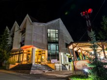 Accommodation Cătămărești-Deal, Pellegrin Vila