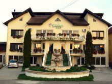 Accommodation Hunedoara county, Flamingo Villa