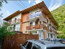 Accommodation Teregova, President B&B