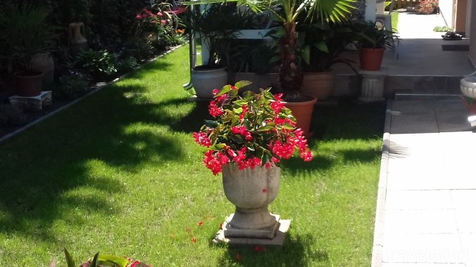 Virág Apartment Balatonlelle