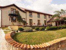 Accommodation Vișina, La Felinare Guesthouse