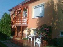 Accommodation Hajdúszoboszló, Mercedes Guesthouse
