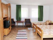 Accommodation Lake Tisza, Tisza-tavi Guesthouse