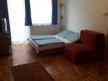 Accommodation Hajdúszoboszló, Apartment Liliom