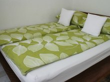 Apartament Ungaria, Apartament Bambusz Wellness