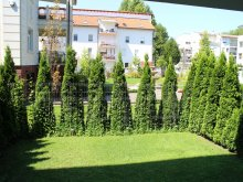 Accommodation Veszprém, Bambusz Wellness Apartement