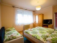 Apartament Ungaria, Apartament Trizi