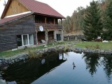 Accommodation Sibiu county, Dan-Cristian Chalet