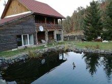 Accommodation Valea Cetățuia, Dan-Cristian Chalet