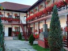 Accommodation Cămărzana, Cris-Mona Guesthouse