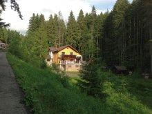 Vilă Comarnic, Vila 10