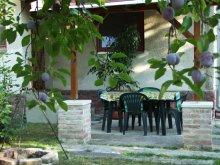 Accommodation Lake Balaton, Lukács Apartment