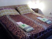 Accommodation Fadd, Hargita Apartment House