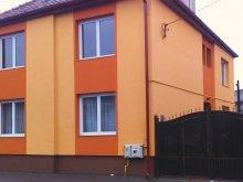 Casă de oaspeți județul Mureş, Casa Tisza