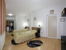 Accommodation Sibiciu de Sus, Select Villa