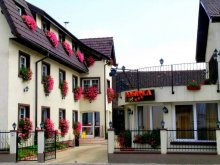 Szállás Brassó (Brașov), Tichet de vacanță, Luiza Panzió