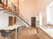 Accommodation Întorsura Buzăului, Classic Duplex Apartment