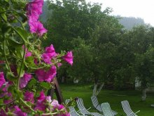 Accommodation Valea Fântânei, Silvana Villa