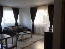 Apartament Dragomirești, Apartament Silvana