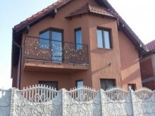 Villa Comănești, Pity Villa