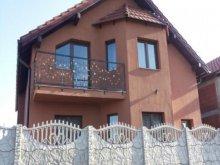 Villa Szombatság (Sâmbăta), Pity Villa
