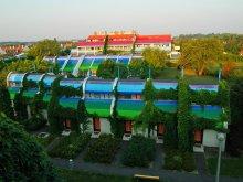 Accommodation Southern Great Plain, Hőforrás Hotel