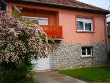 Vendégház Borsod-Abaúj-Zemplén megye, Adrienn Vendégház
