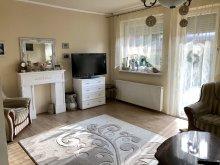Accommodation Somogy county, Netti Apartment