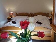 Accommodation Obrănești, Lányi Guesthouse